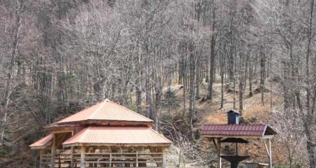 Foisorul din lemn, constructia perfecta pentru zilele de vara